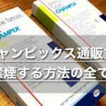 チャンピックス通販で禁煙に成功する方法を大公開【個人輸入購入】